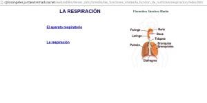 respiratorio 5