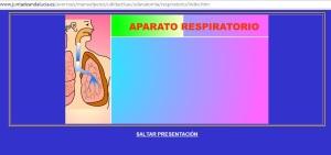 respiratorio2