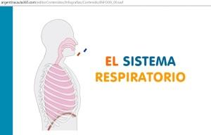 respiratorio1